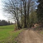 Saftige Wiesen am Herrbach - Foto: Ingo Pedal