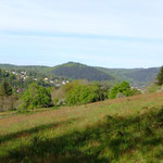 Der Neckarriedkopf aus Kleingemünder Sicht - Foto P. Welker