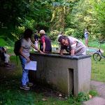 Erfrischung bietet ein Kneipp-Becken  (Foto: PeWe)