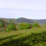 Neckarriedkopf aus Kleingemünder Sicht