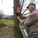 Der Baumläuferkasten wird von Gerhard ausgerichtet