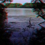 Verwunschene Wasserwelten