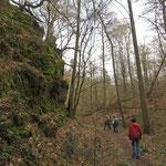 Im Hellenbachtal