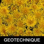 ETUDES DE SOL GEOTECHNIQUES