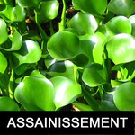 ETUDES DE SOL ASSAINISSEMENT