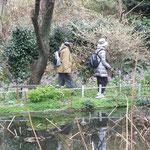 庭園内には風情のある小池も