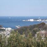 横須賀本港、右手に米軍横須賀基地。猿島は画面外の右手に見える