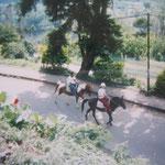 乗馬体験は少々危険?