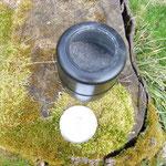 Urne Asche Naturbestattung
