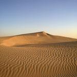 Discover the Sahara desert