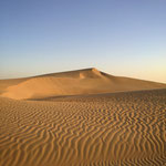 Discover the Sahara desert