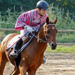 Mit dem Pferd um die Welt - Julian stellt uns das Vollblut vor