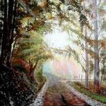 Le chemin de brume
