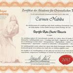 Zertifikat geprüfte Raks-Sharki-Tänzerin