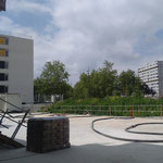 Habitat Participatif - Petit Bois - Les Chalets - Vue de la terrasse commune