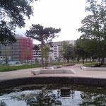 Habitat Participatif - Petit Bois - Les Chalets - Jardin public - Espace pique nique