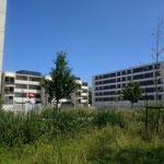 """Projet """"Petit Bois"""", Bellefontaine, Toulouse. Porté par la SA HLM des Chalets, accompagné par Faire-Ville"""