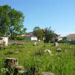 Habitat Participatif - Le COL - DOMAN - Billère - Photo du terrain