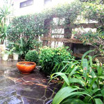 S's garden