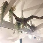 梁に流木を渡し、エアプランツなどのディスプレイをプラスした入口装飾
