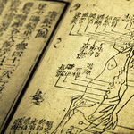 Traditionelle Chineische Medizin Stuttgart