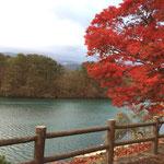 紅葉の裏磐梯