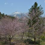 亀ヶ城址から見た磐梯山