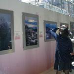 「福島の桜フォトコンテスト」写真展