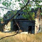 Old Homestead II