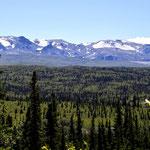 Interior Alaska View