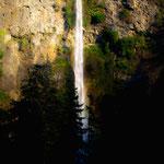Multnomath Falls II