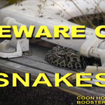 Snake sign made for Cache Creek, OR Checkin Station and Coon Hallow