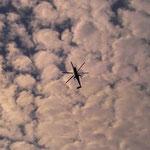 Skycrane above