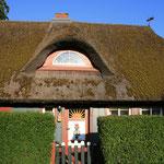 """eigentlich heißen die """"Reetdächer"""" auf dem Darß """"Rohrdächer"""" und hier: ein richtig traditionelles Rohrdachhaus in Born"""