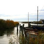 Boote in Althagen in beschaulicher Ruhe