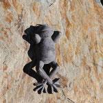 ruhender und genießender Frosch