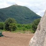 Blick auf Burg Montsoriu