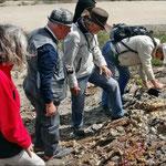 Geologische Bestimmungsversuche