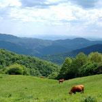 Landschaft auf dem Weg nach Sant Marti d´Ogassa