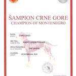 Диплом Чемпиона Монтенегро (Черногории)
