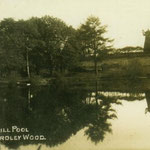 This tower windmill was actually in Solihull Lodge. It was dynamited in 1957. The pool is Bampton's pool, Priory Road.