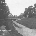 The Dingle, near Highfield Road. Moseley and Hall Green also lay claim to this stretch of riverside on old postcards.