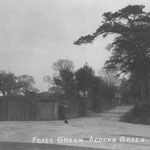 Foxes Green, now Olton Boulevard East between Fox Hollies Road and Shaftmoor Lane, c. 1905