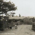 Yardley Wood station, c. 1908. After being widened in 1937, the road has been narrowed again, and looks rather like this now