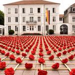 1000 Rosen für Zweibrücken, 2012