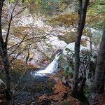 L'automne à Cros de Géorand - Cros de Géorand - (Françoise)