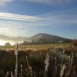 L'automne à Cros de Géorand - Cros de Géorand - (Mathilde)