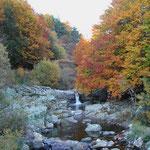 L'automne à Cros de Géorand - Cros de Géorand - (Yvonne)