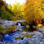 L'automne à Cros de Géorand - Cros de Géorand - (Anaïs)
