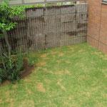 芝生、張替え工事後。緑が鮮やかです。芝密度も濃いです。
